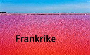 C 37 Red Ocean france