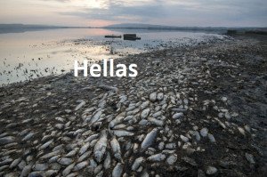 C 44 h Hellas lake