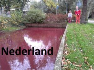 C 48 Nederland