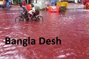 C 49 b Bangla Desh