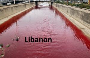 C 49 c Libanon